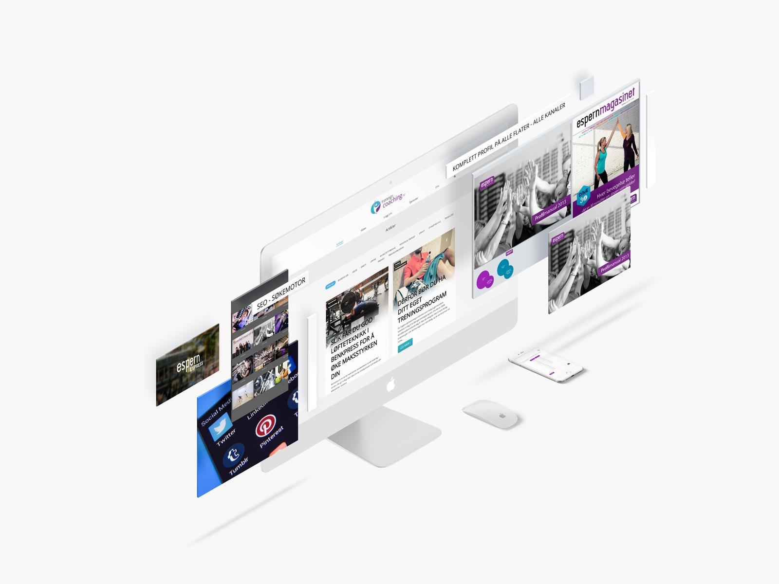 webdesign, seo, nettutvikling, webutvikling, profil, reklamebyrå, ringsaker